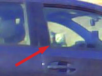 118. Cat in a car on 90 East